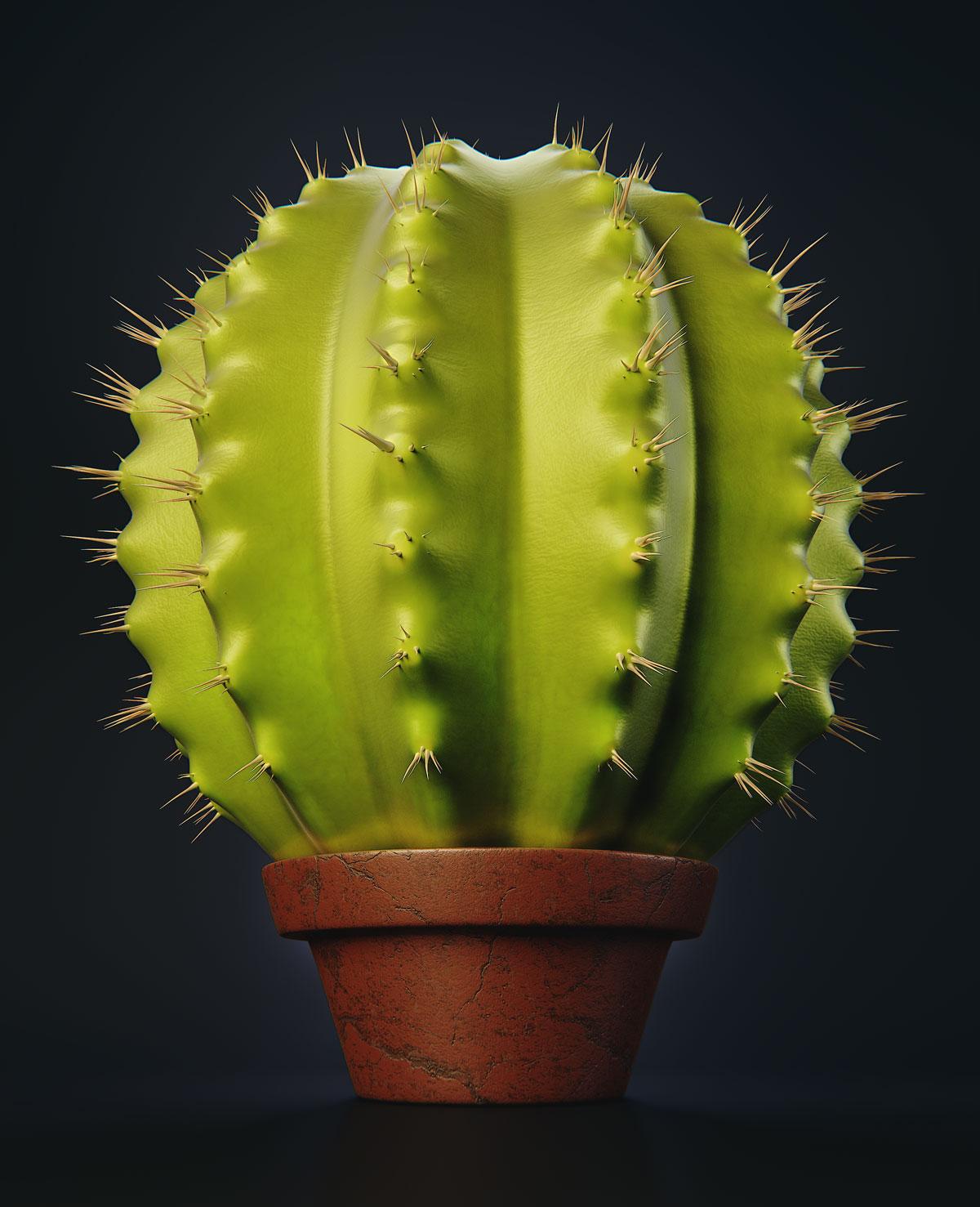 Cactus_Composited_01